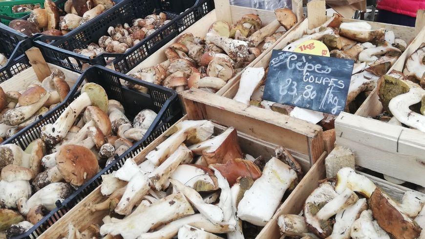Ce samedi matin, sur le marché de Valence, les cèpes viennent d'Isère