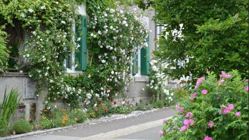 Chaque année Chedigny accueille la festival des roses