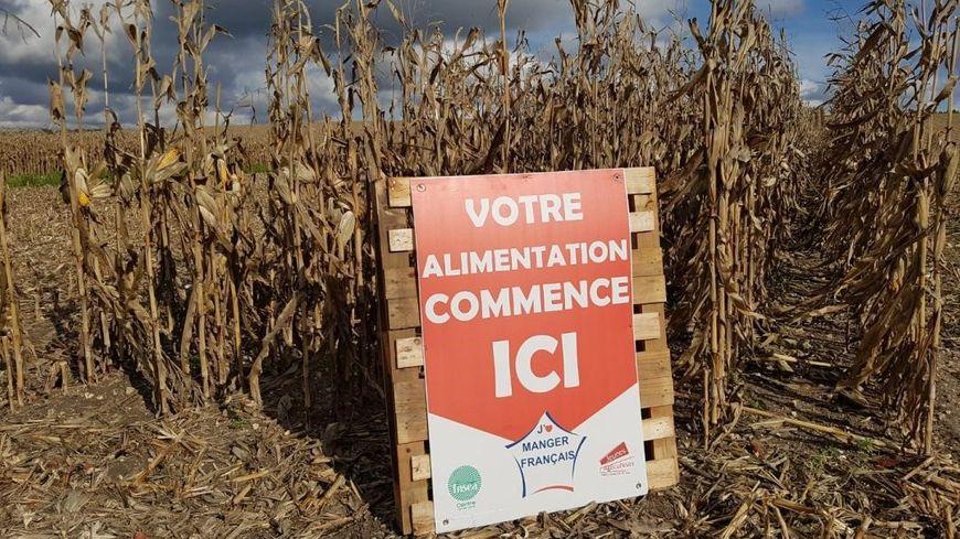 Une centaine de panneaux de ce genre vont être disposés au bord des champs, en Indre-et-Loire, à partir du 22 octobre