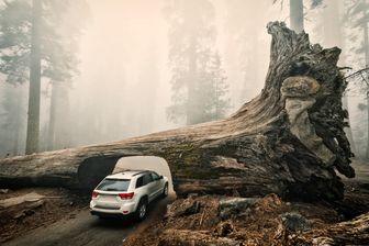 Comment les SUV pèsent-ils sur le réchauffement climatique ?