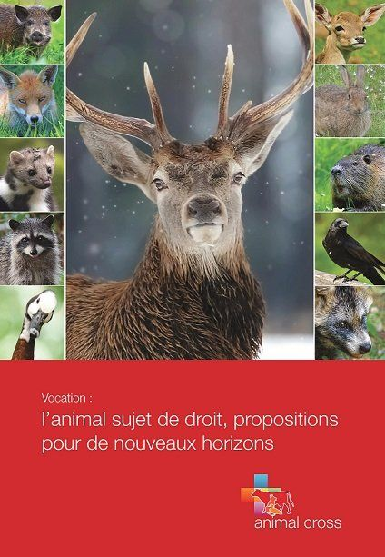 Un ouvrage à propos de la condition animale, soutenu par Julien Irrilli