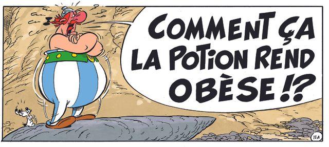 "Obélix dans ""La fille de Vercingétorix"" de Jean-Yves Ferri et Didier Conrad"