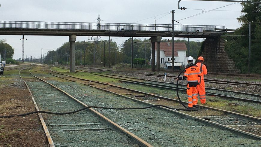 Deux agents de la SNCF en train d'ensemencer les voies ferrées sur le site de Brevans près de Dole dans le Jura