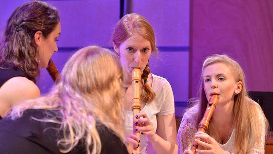 Festival Eeemerging 2019, Ensemble Palisander
