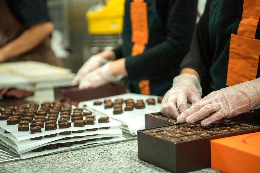 Chocolatiers à l'ouvrage