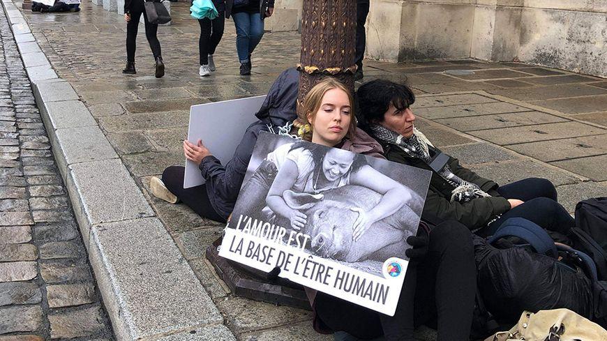 Manifestation des militants du collectif Loi de Rose à Paris