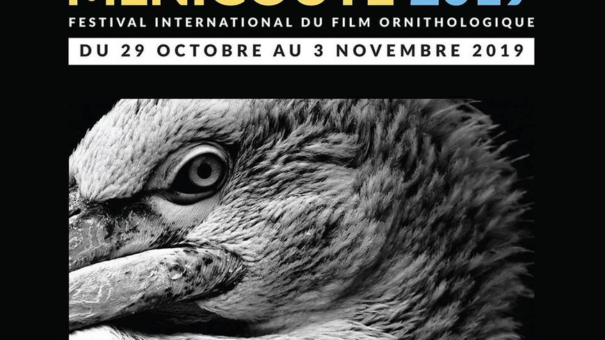 Festival international du film ornithologique de Ménigoute