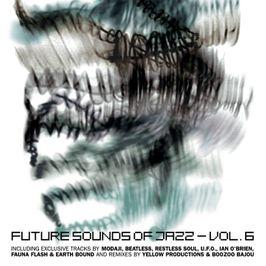 "Pochette de l'album ""Future sound of jazz / Vol. 6"" par Modaji"