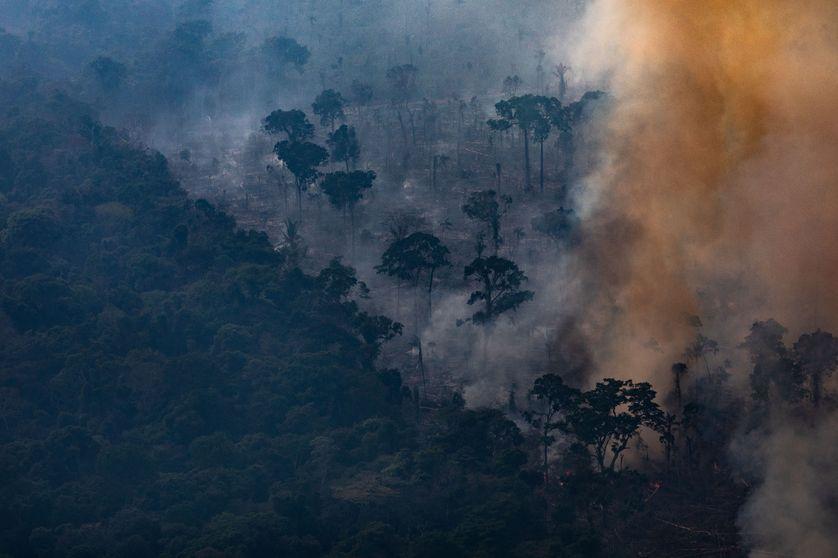 L'Amazonie, terra incognita