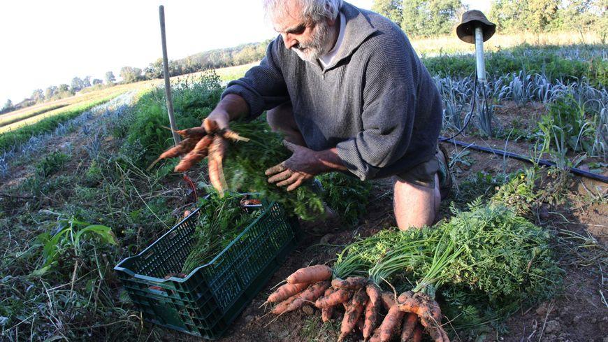 Un agriculteur à Gimont (Gers), en 2009.