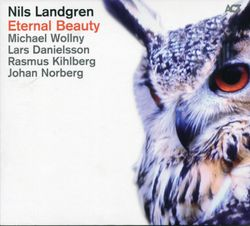 Another kind of blue - NILS LANDGREN