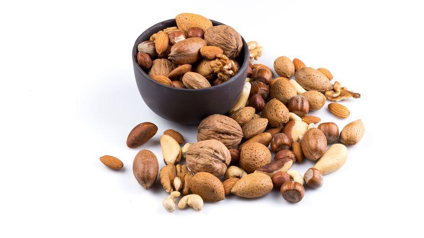 Les noix et les noisettes