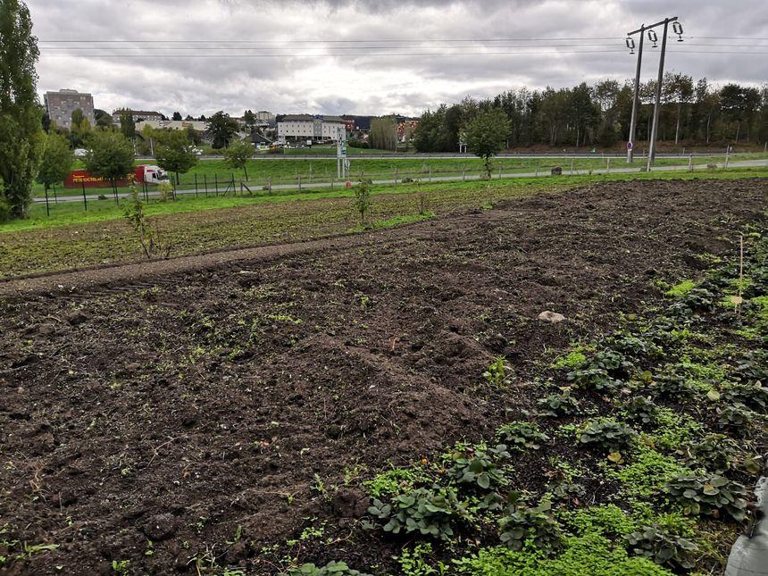 Ici, bientôt pousseront fruits et légumes, pour la cuisine centrale de Guéret.