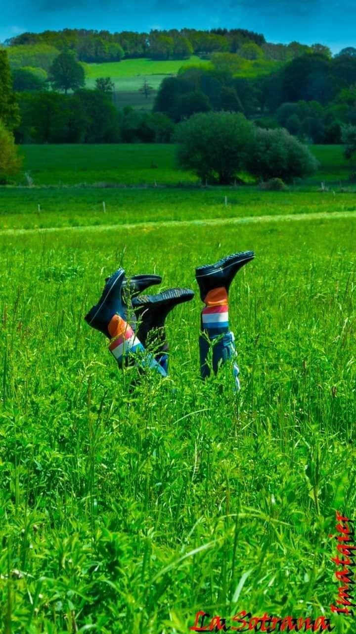 Les agricultrices de Creuse espèrent avoir plus de visibilité.