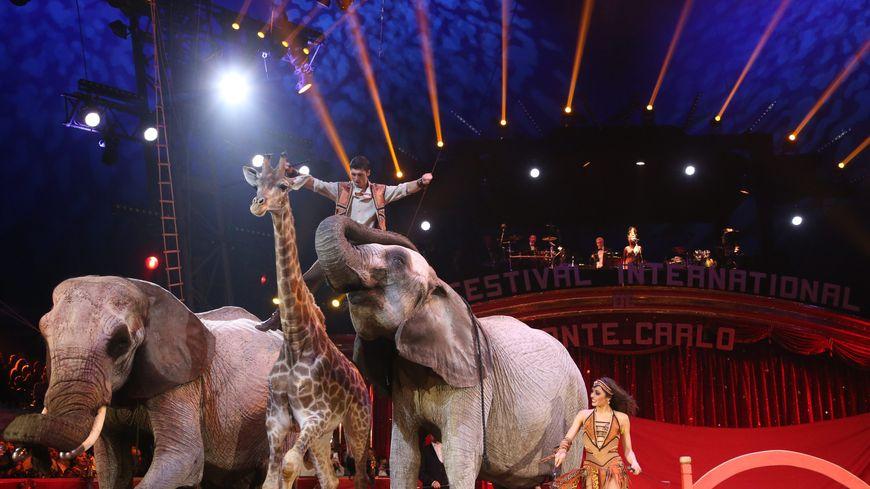 Le 42eme Festival International du Cirque de Monte-Carlo en janvier 2018.
