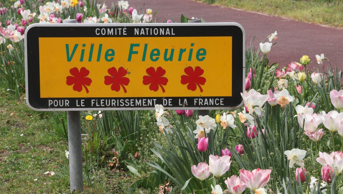 """Le Territoire de Belfort labellisé """"département fleuri"""""""