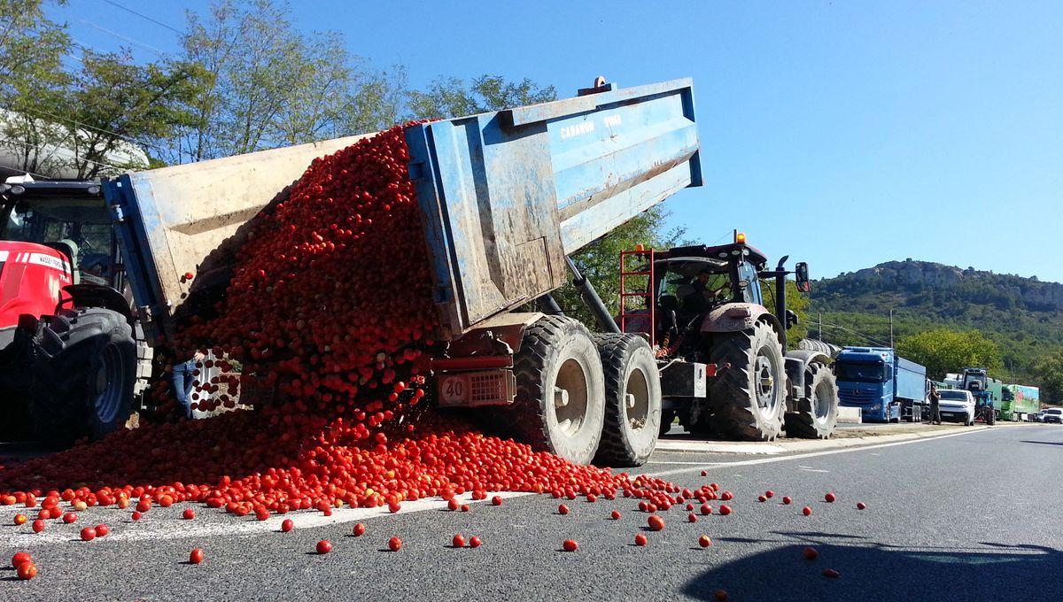 Nouvelle mobilisation des agriculteurs de Vaucluse