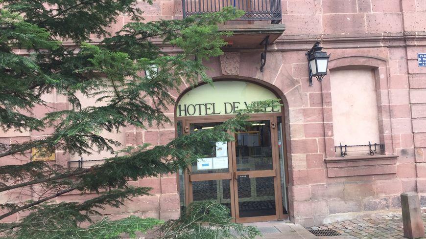 La mairie de Bergheim distribuera moins de branches de sapin aux habitants cette année
