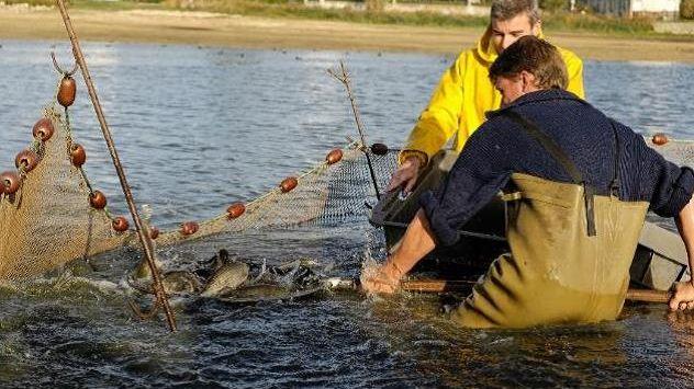 Une pêche est organisée sur deux jours à l'étang du Louroux.