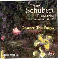 Trio avec piano en Mi bémol Maj op 100 D 929 : Andante con moto - Trio Guarneri De Prague