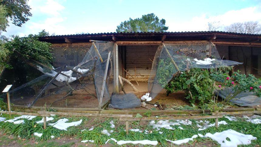 Une volière du zoo d'Upie effondrée sous le poids de la neige.