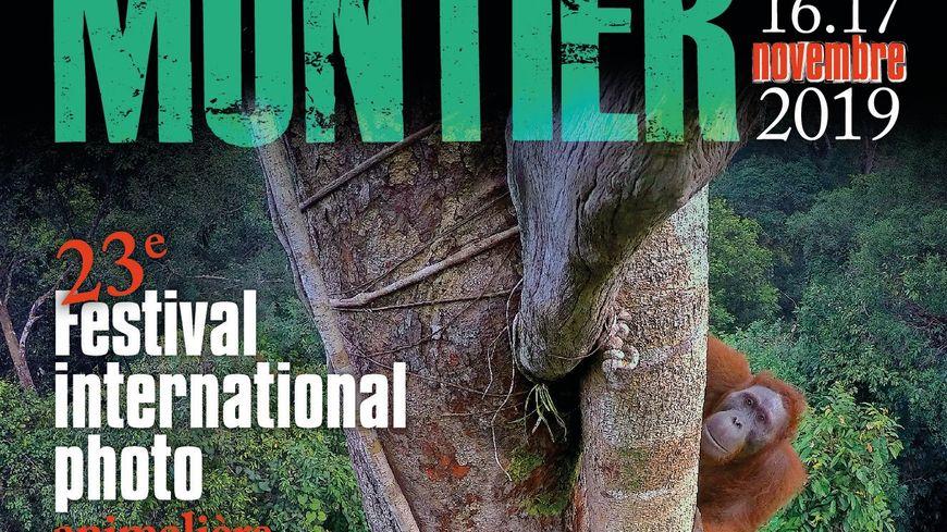 Affiche 23ème Festival international de la photo animalière et de nature