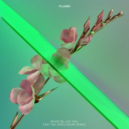 "Pochette de l'album ""Never Be Like You (Disclosure Remix)"" par Flume"