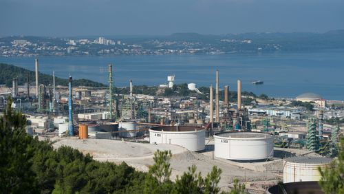 Les députés font marche arrière et retirent l'huile de palme de la liste des biocarburants bénéficiant d'avantages fiscaux