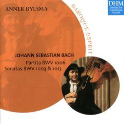 Partita pour violoncelle piccolo en Mi Maj BWV 1006 : Loure - ANNER BYLSMA