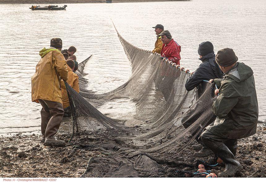 Moins de poissons qu'il y a trois ans dans les filets