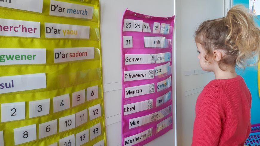 École bilingue en langue bretonne