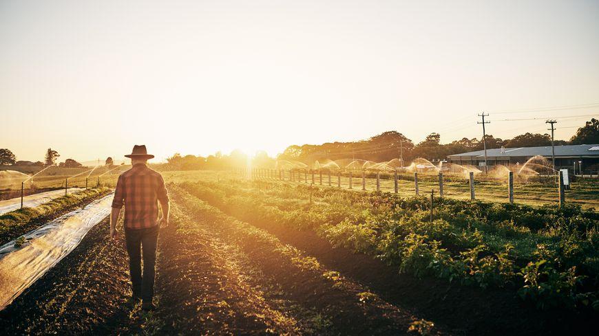 Des agriculteurs invitent de futurs associés à visiter leurs exploitations.