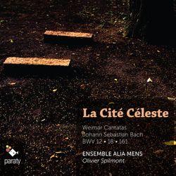 Cantate BWV 18 : Gleichwie der Regen und Schnee vom Himmel fällt : Sinfonia (instrumental) - ENSEMBLE ALIA MENS