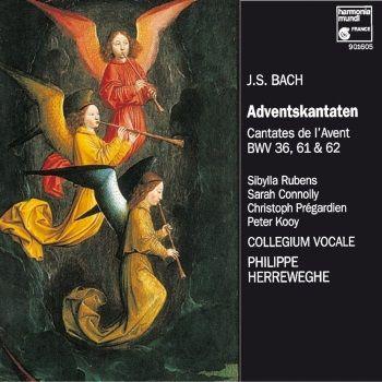CD Bach Cantates de l'Avent Collegium Vocale Herreweghe