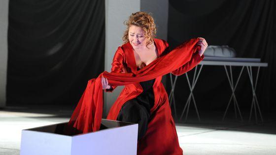 Karine Deshayes dans le rôle de Charlotte, Werther, Jules Massenet (Adaptation du roman de Goethe) - Le 20 janvier 2011 à l'Opéra de Lyon