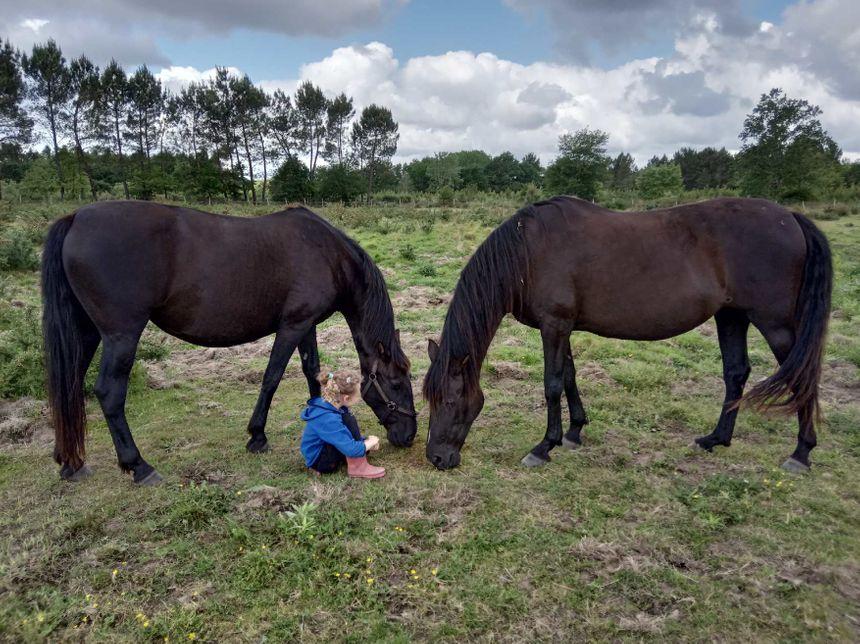 La petite fille de Célia Le Corre, éleveuse de chevaux espagnols.