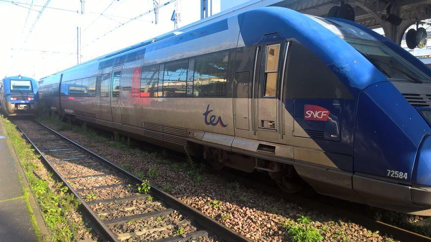 Le TER a percuté une voiture à Cintegabelle (Haute-Garonne).
