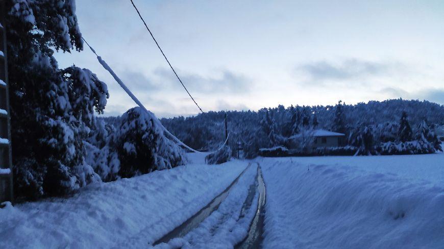 Chutes de neige dans la Drôme, ici à Peyrins, une ligne électrique pliée sous le poids de la neige. 15 novembre 2019.