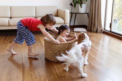 S'inspirer des animaux pour élever nos enfants ?