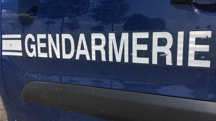 Gendarmes (illustration)