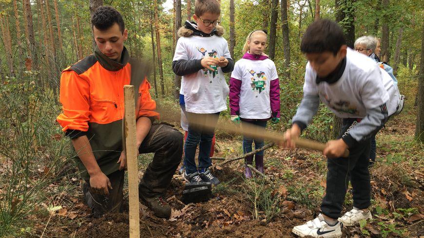"""Les """"kids"""" de l'ASSE plantent des arbres à Saint-Marcellin-en-Forez - France Bleu"""