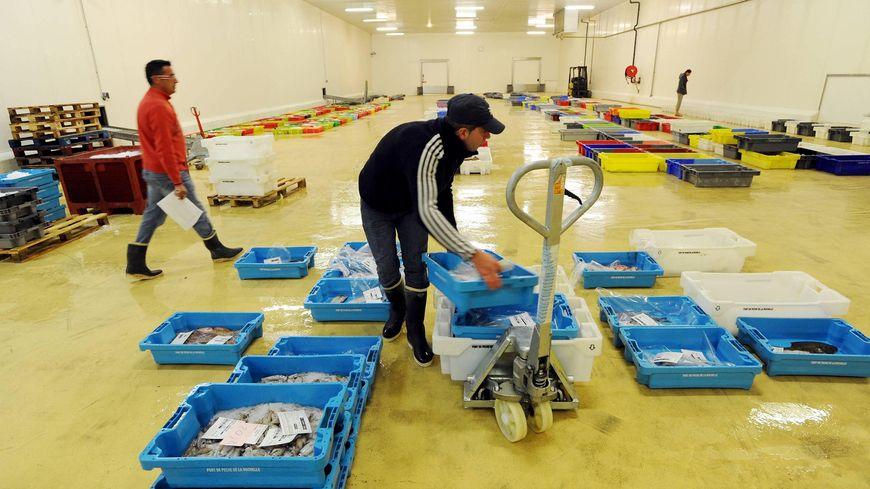 La criée du port de pêche de Chef de Baie  (ici en 2009), un équipement sur dimensionné
