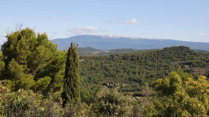 Le mont Ventoux, l'emblème d'un territoire d'exception