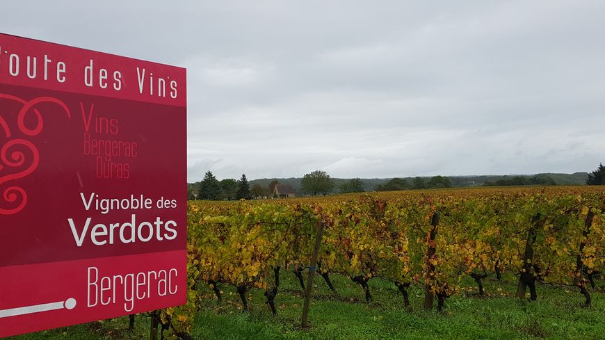 Panneau de signalisation du vignoble des Verdots