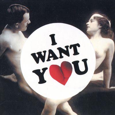 """Pochette de l'album """"I want you"""" par The Wantones"""