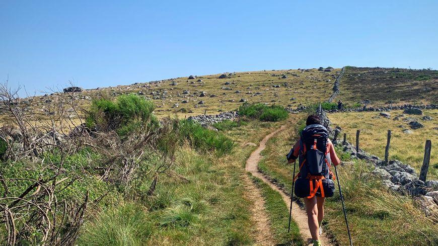 20.000 randonneurs chaque année sur le GR65 en Aveyron.