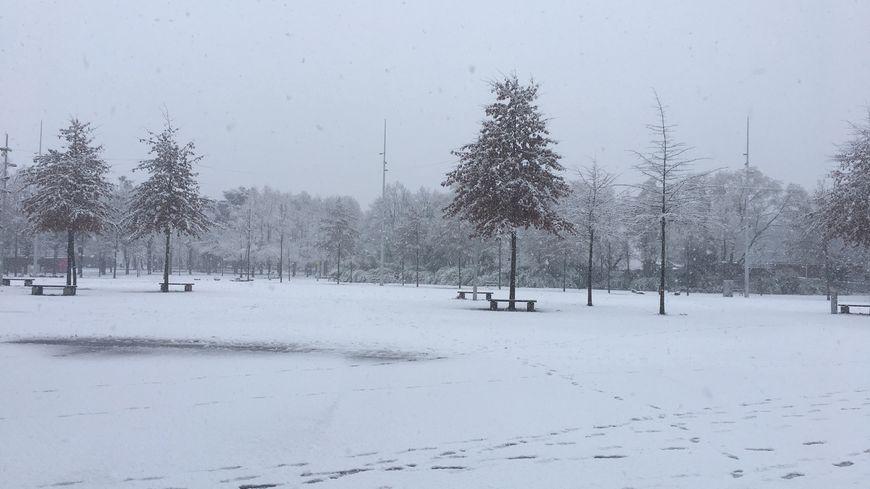 La neige dans le parc François Mitterrand à Saint-Étienne (photo d'archives)
