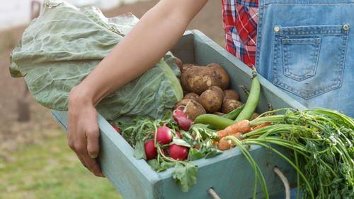 Se nourrir : vieux problèmes, nouveaux défis (3/4) : Rapprocher le champ de l'assiette : les promesses de l'alimentation locale