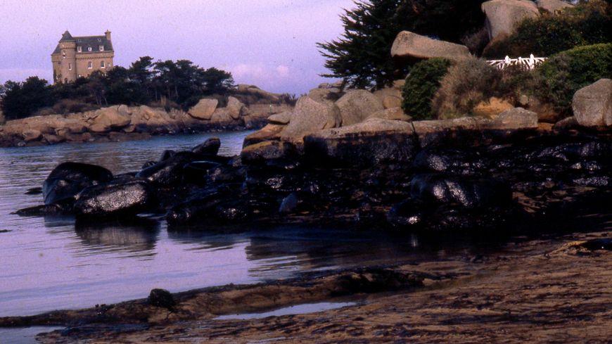 Marée noire après le naufrage du Tanio en 1980 (archives)
