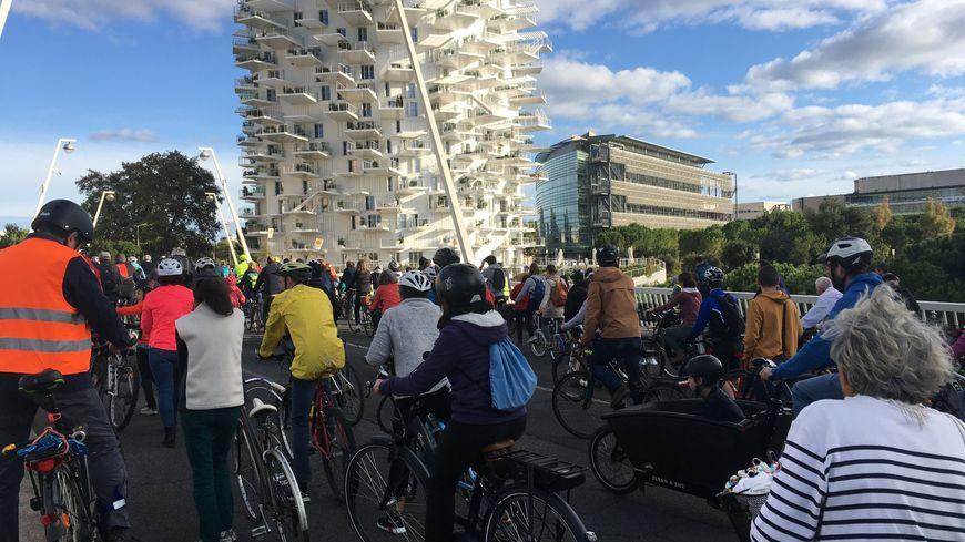 """Plus de 2.000 cyclistes pédalent à Montpellier pour """"Tous à vélo"""" - France Bleu"""